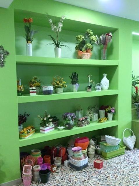 interno piccolo giardino