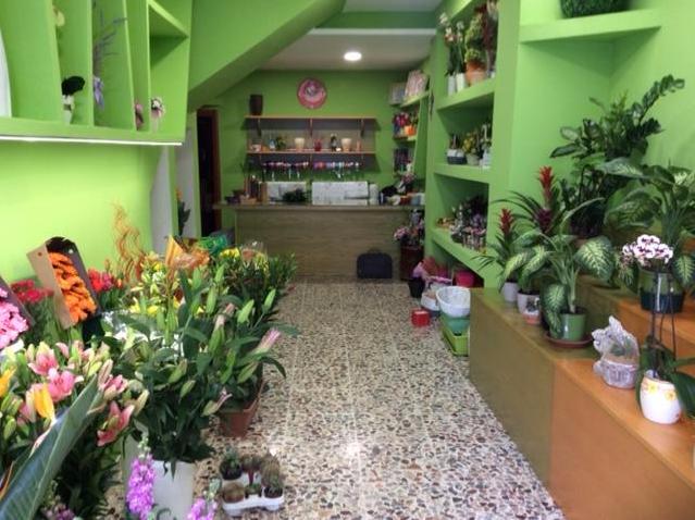 piccolo giardino manfredonia
