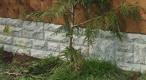 concrete gravel board