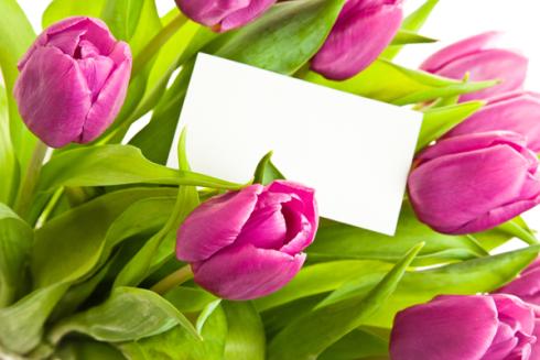 mazzo di tulipani