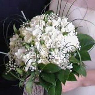 fiori classici