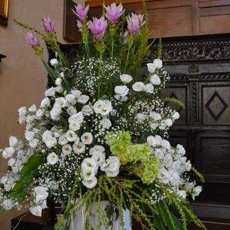 piante per cerimonie