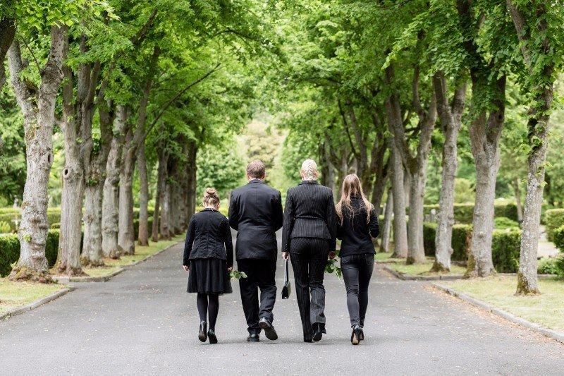 un gruppo di persone che camminano in un viale alberato
