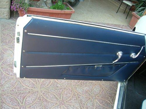 portiera auto aperta con rivestimento blu