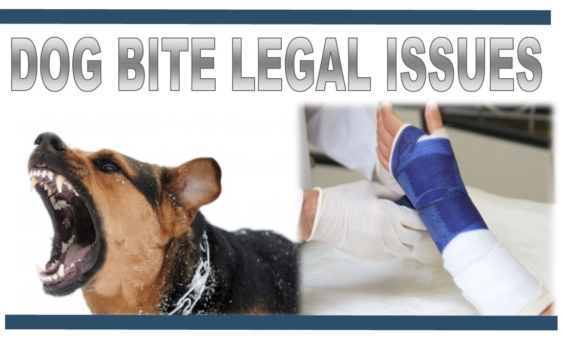 dog bite legal help and attorney