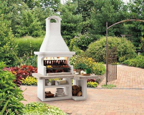 un barbecue acceso all'aperto con vista delle piante
