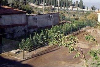 un giardino con un pozzetto visto dall'alto