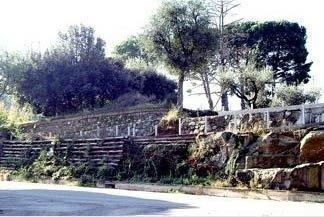 piccolo terrazzamento realizzato con tronchi e muro a secco