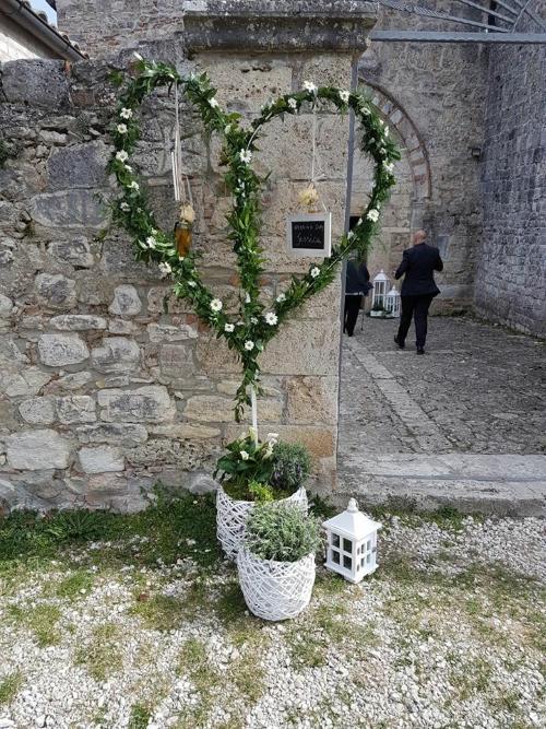 due vasi di piante,delle foglie e fiori intorno a una struttura a forma cuore