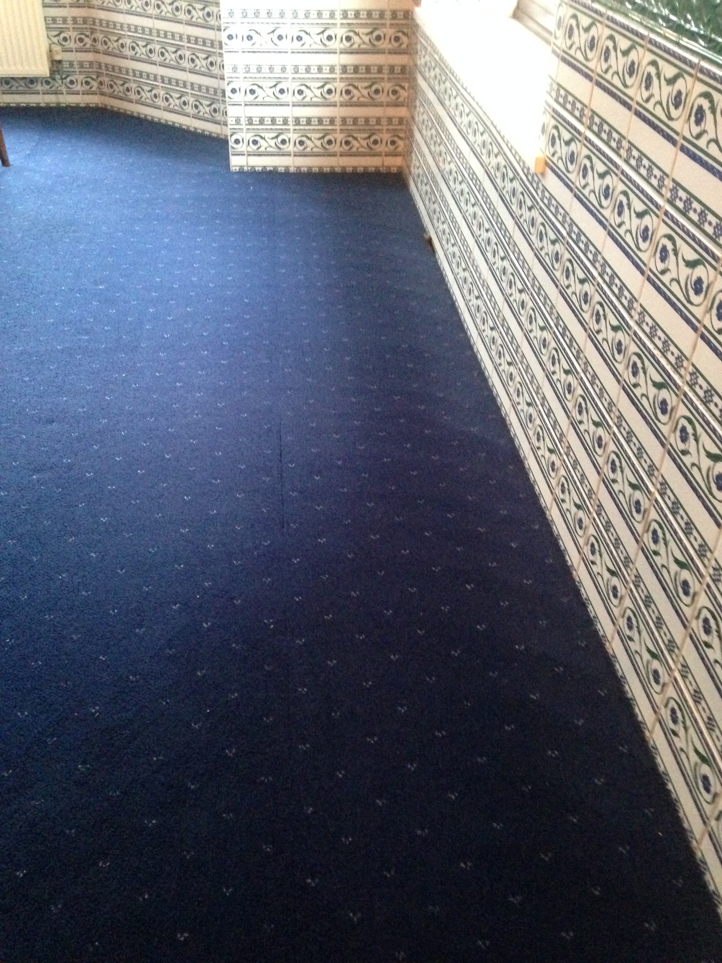 carpet after cleaning