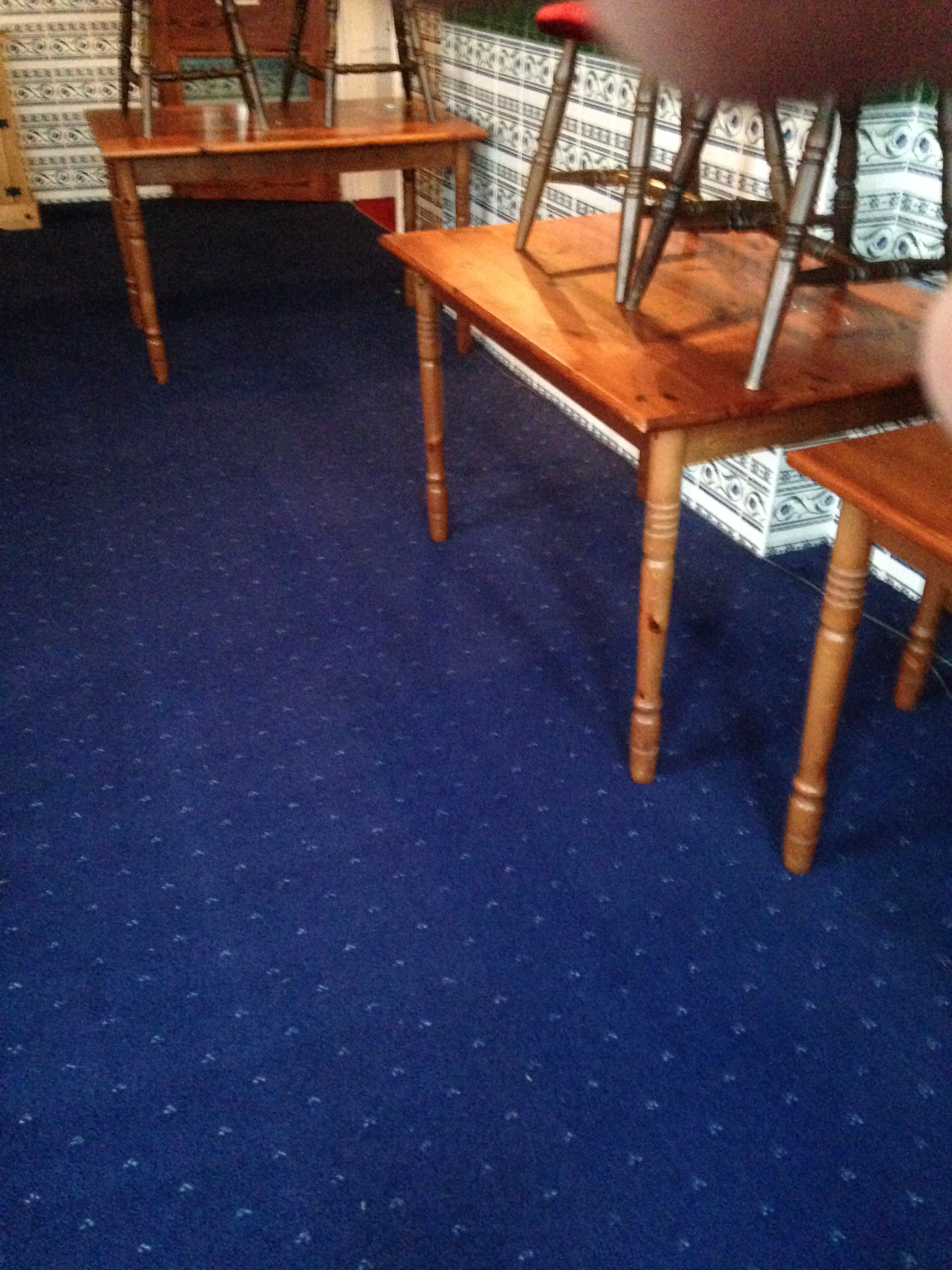 carpet cleaned by the experts