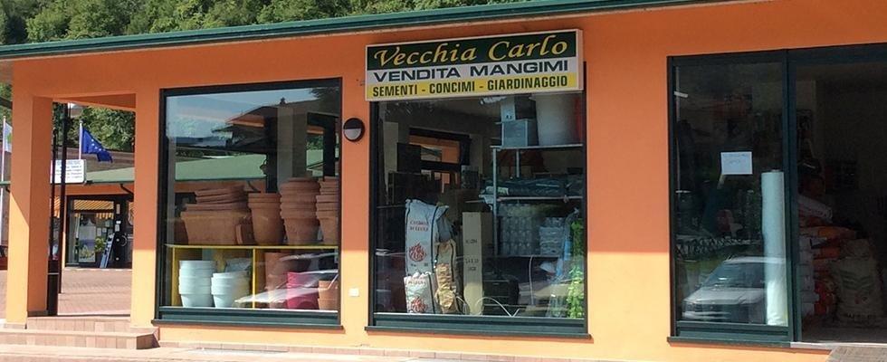 VECCHIA CARLO