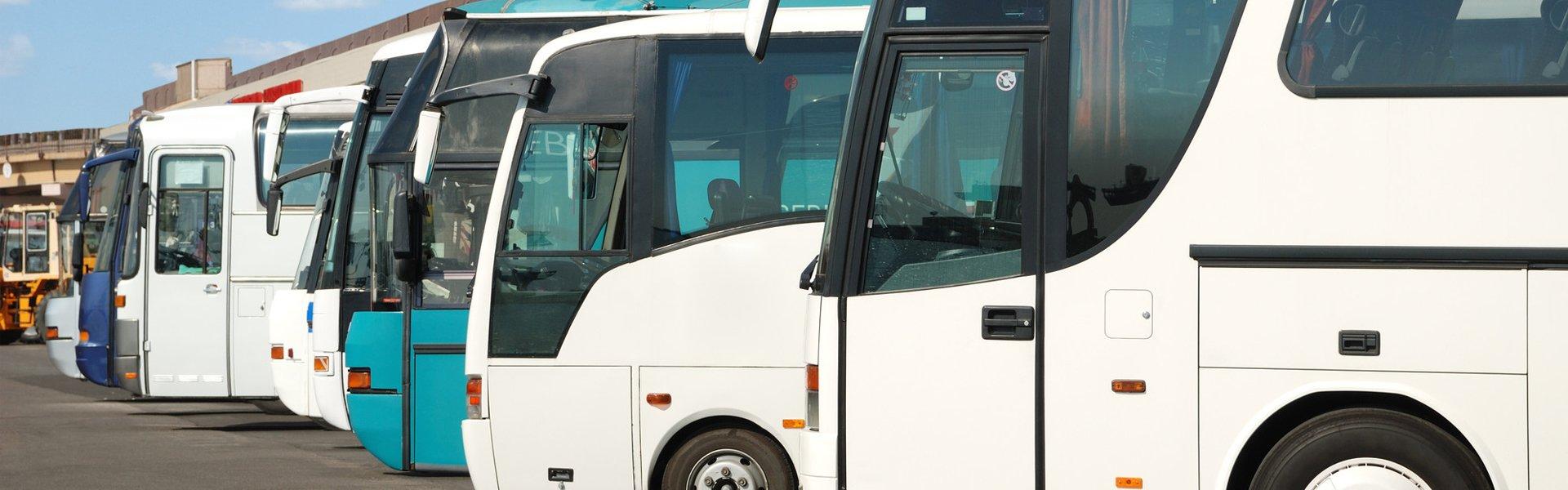 white coaches