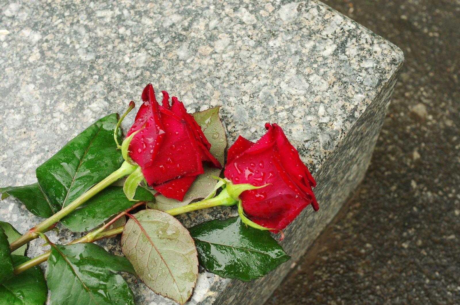 Due rose rosse sulla tomba