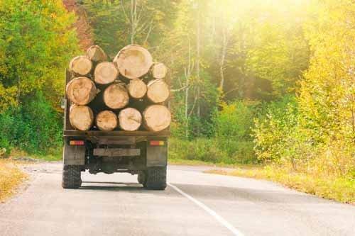 un camioncino che trasporta legname