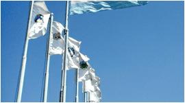 stampa bandiere