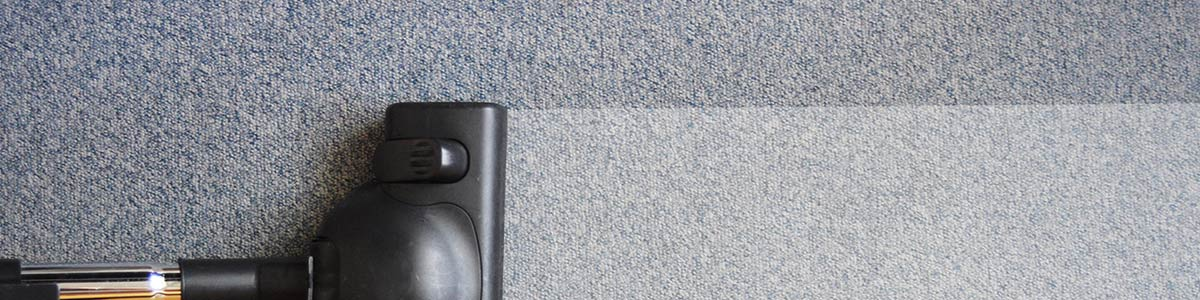 Carpet Cleaning Company Brisbane Floor Matttroy