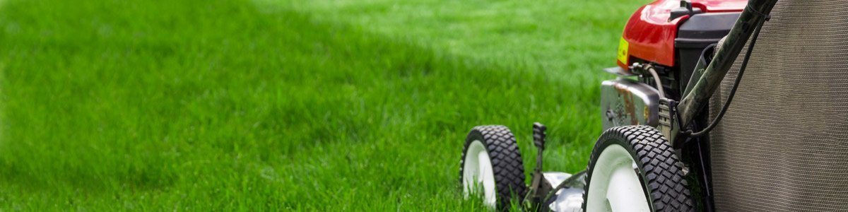 Our lawn mowing solutions in Brisbane