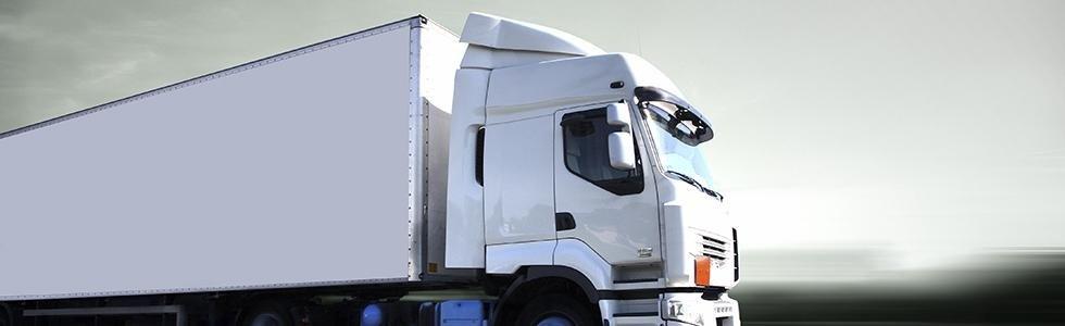 Trasporti di merci nazionali