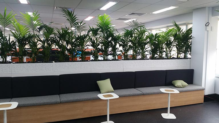Office Planters And Reception