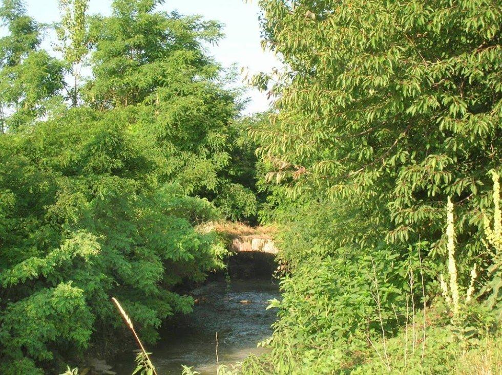 Vigone 3 (ponte airali sul lemina)