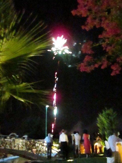 Delle persone in giardino in piedi mentre guardano dei fuochi d'artificio nel cielo