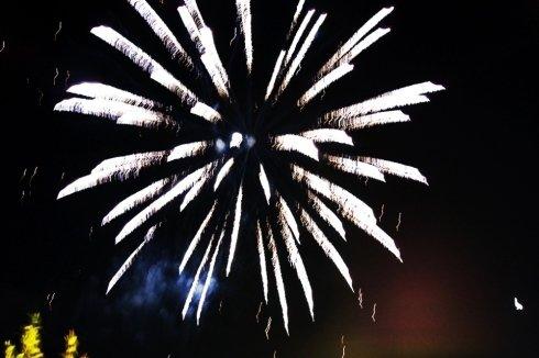 Dei fuochi d'artificio a forma di fiore in cielo