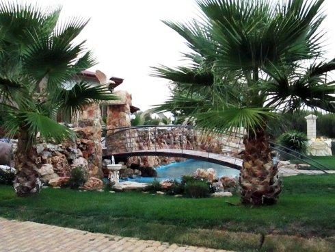 Delle palme e un ponte sopra a una fontana in un giardino