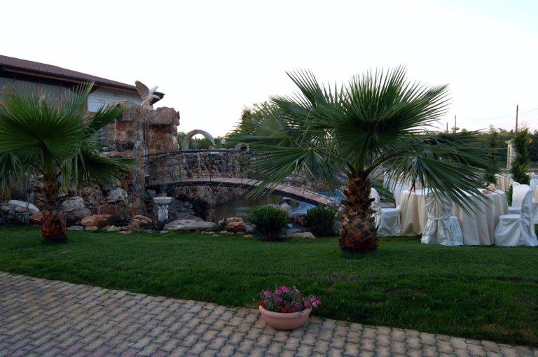 Dei tavoli apparecchiati e  delle palme in un giardino
