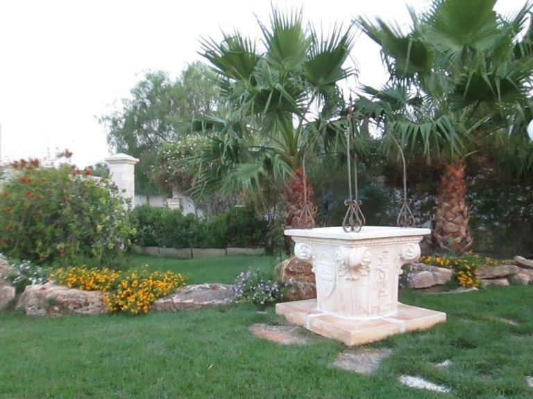 Delle rocce con dei fiori intorno e delle palme in un giardino