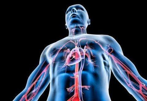 Angiologia e flebologia