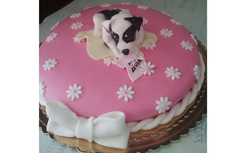 torta design cucciolo