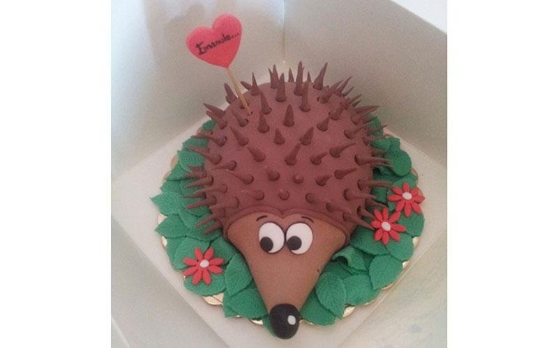 torta design riccio