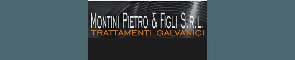 MONTINI PIETRO & FIGLI SRL