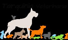 Tarquinia Veterinaria