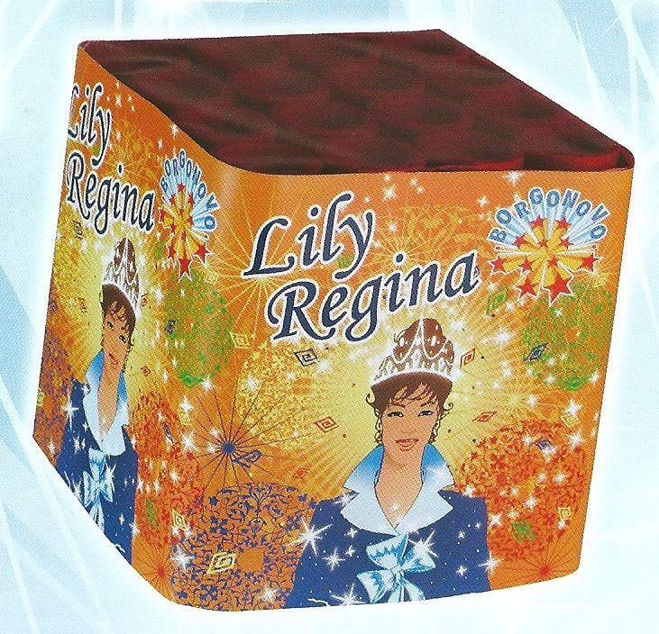 scatola di fuochi artificiali LILY REGINA