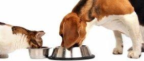 mangimi per animali domestici
