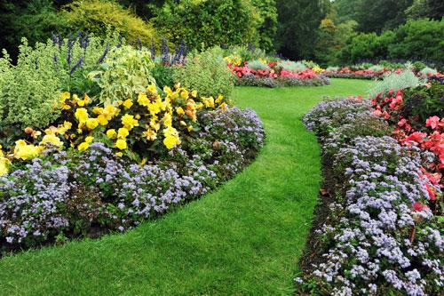 Giardino con aiuole e cammino di erba in mezzo