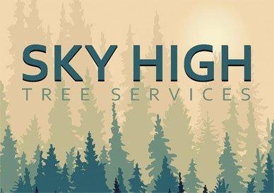 Sky High Services logo