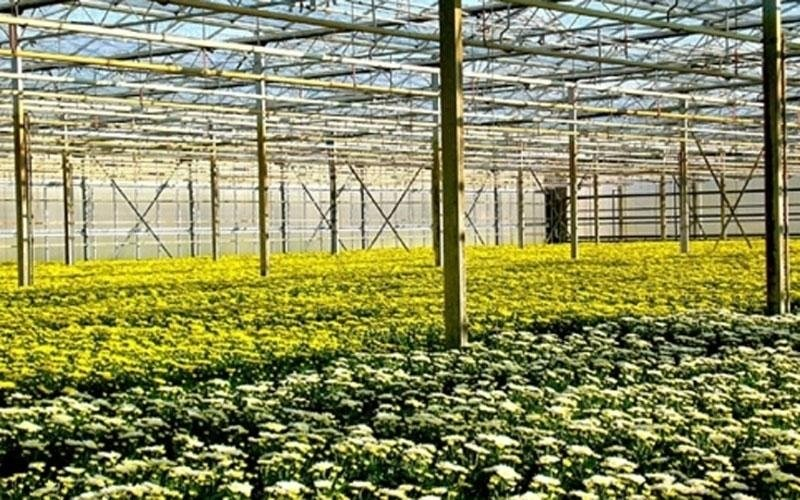 Hot air systems for greenhouses