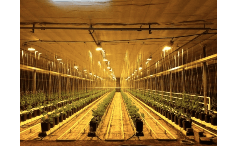 Heating systems for agriculture