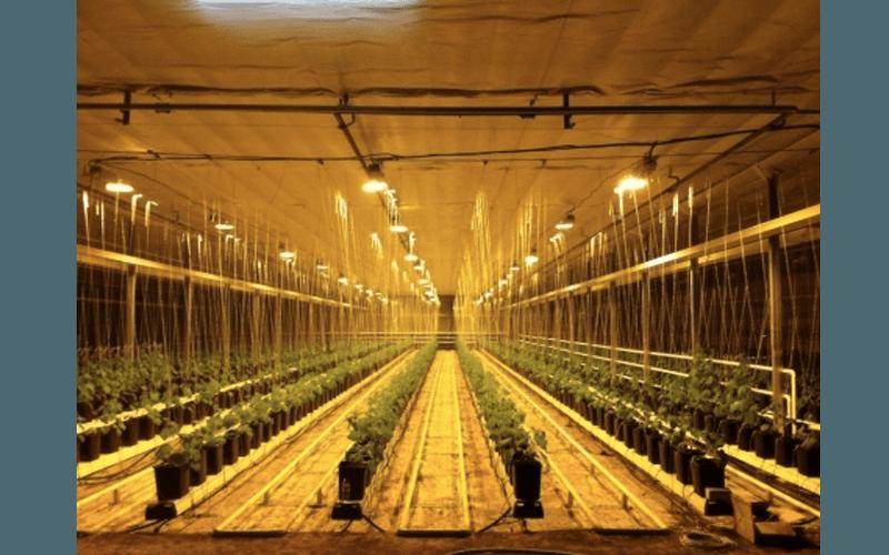 Отопление для сельского хозяйства