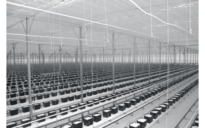 Systems for floriculture