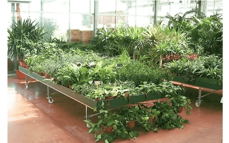 Benches for greenhouses