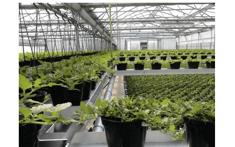 Greenhouses accessories supply