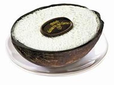 Gelato al cocco in guscio naturale