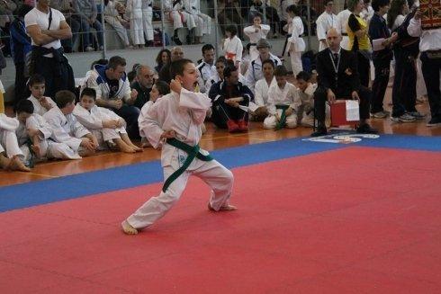 Gara di Karate