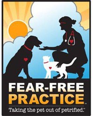Fear-Free Practice