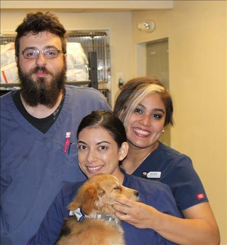 Lakeside Animal Clinic staff in Houston, TX