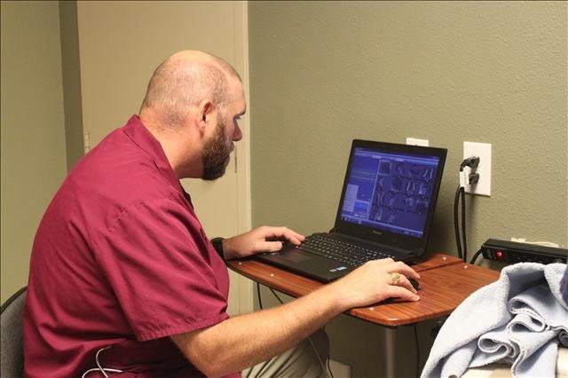 veterinary exams in Houston, TX